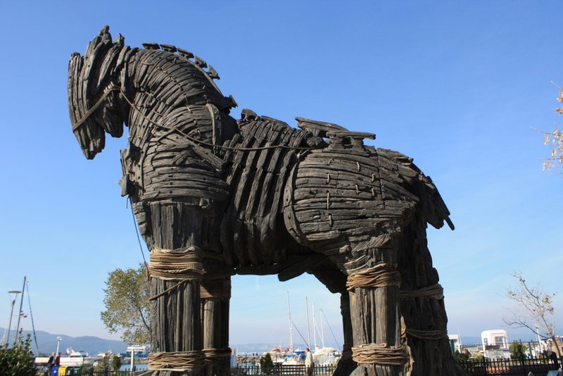 5602152-trojan_horse_from_the_movie_of_troy-0